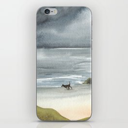 Black Dog on a Stormy Beach iPhone Skin