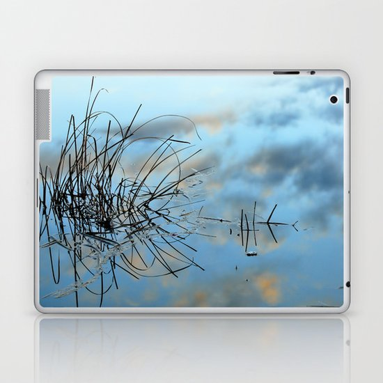 graphics in nature Laptop & iPad Skin
