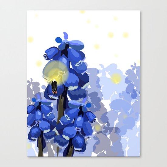 Grape Hyacinth Canvas Print