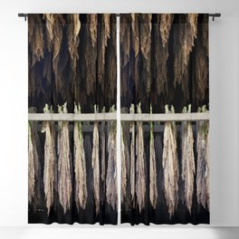 Tobacco Barns in Suffield Connecticut Blackout Curtain