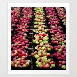 An abundance of apples Art Print