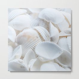 White Shells Metal Print