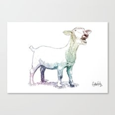 scream goat Canvas Print