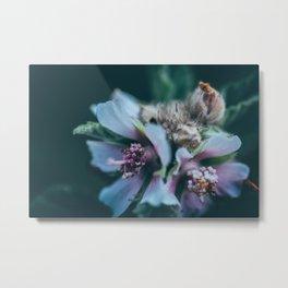 Melancholic flowers Metal Print