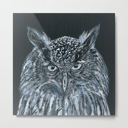 WHAT THE OWL SEES Metal Print