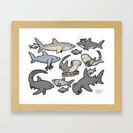 Save ALL Sharks! Framed Art Print