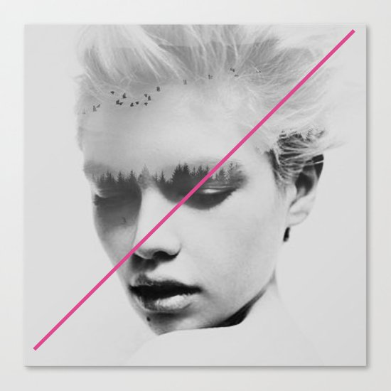 PiNk STripe to ART Canvas Print