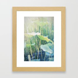 Zen Water Garden Framed Art Print