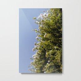 Flores y el Cielo Metal Print