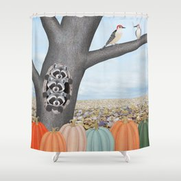 red bellied woodpeckers, heirloom pumpkins, and raccoons in a tree Shower Curtain
