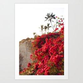 Bougainvillea & Palm Trees Art Print
