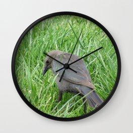 Beautful Little  Bird at Jensen NaturePark Wall Clock