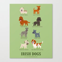 IRISH DOGS Canvas Print