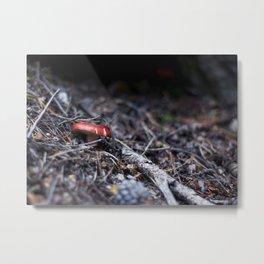 Red Mushroom Metal Print