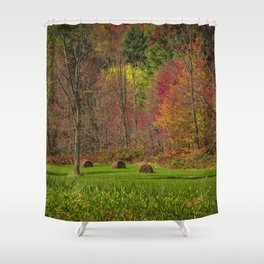 Lonely Bails of Color Shower Curtain