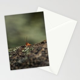 The Cliffhanger Stationery Cards