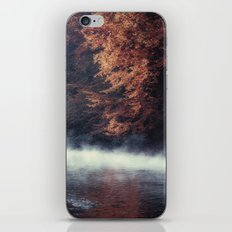 Nature's Mirror - Fall on the River iPhone & iPod Skin