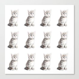 Kittens Forever Canvas Print