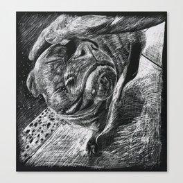 Good Boy Canvas Print
