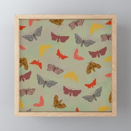 Vintage Butterflies Framed Mini Art Print