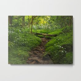 Forest Haven in Iao Valley Metal Print
