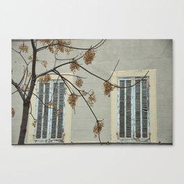 two windows Canvas Print