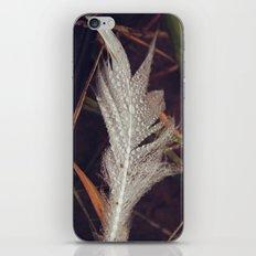 Beach Feathers 3 iPhone Skin