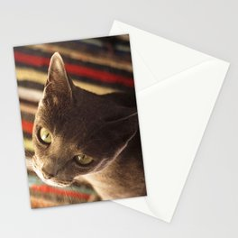 gaze of a cat Stationery Cards