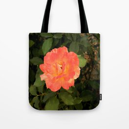 Ash Laden Leaves Tote Bag