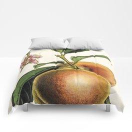 A peach plant - vintage illustration Comforters