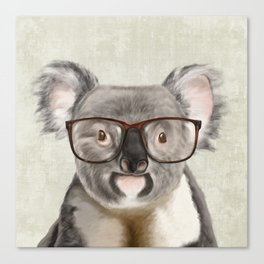 A baby koala with glasses on a rustic background Canvas Print