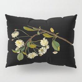 Prunus Cerasus Mary Delany Vintage Botanical Paper Flower Collage Pillow Sham