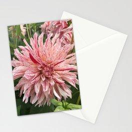 Peppermint Dahlia Stationery Cards