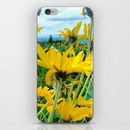 Arrowleaf Balsamroot iPhone Skin