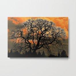 Altered Oak 3 Metal Print