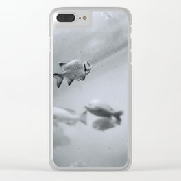 Swimming in Frozen Time Clear iPhone Case