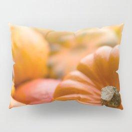 Pumpkins background Pillow Sham