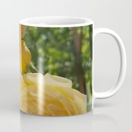 English roses 2 Coffee Mug