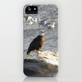 Eagle on Ice iPhone Case