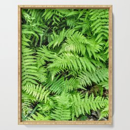 Forest of Ferns Serving Tray