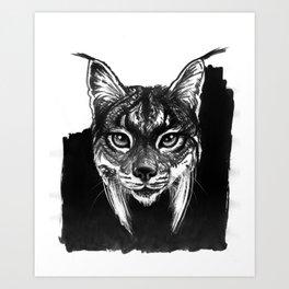 Lynx bobcat Art Print