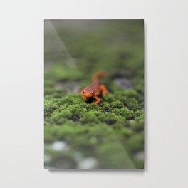 Coming For You - Orange Salamander Metal Print