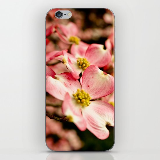 Close Encounter on a Spring Day iPhone & iPod Skin