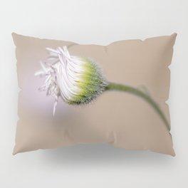Mojave Desert Flower Pillow Sham