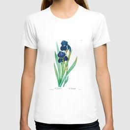 Purple Iris, Iris, Iris Germanica, Iris Germanique, Antique Print Pierre by Joseph Redoute, Plate 309 T-shirt