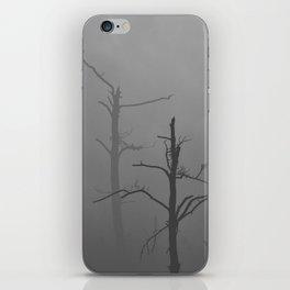 340 | bastrop state park iPhone Skin