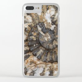 Trilobite Fossil Donegal Clear iPhone Case