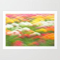 Tulip Field Abstract - Holland Michigan Art Print