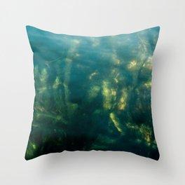 Fresh water seeweed, algae in lake Iseo, Italy Throw Pillow