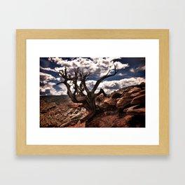 Cassidy Arch Trail Framed Art Print